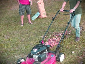 lawn-mowing-sevices